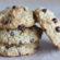 Classic Cookies (Paleo, SCD)